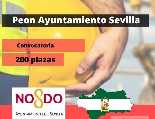 Peones Ayuntamiento de Sevilla